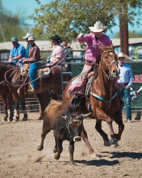 Arizona Trip 030217 188-19