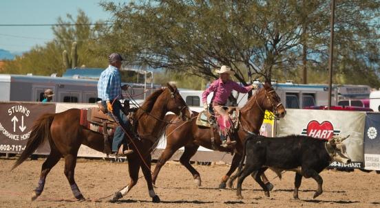 Arizona Trip 030217 580-38